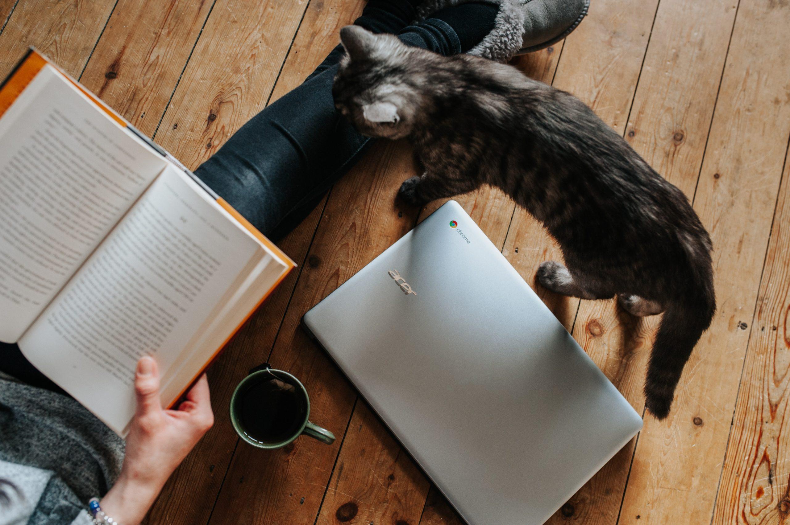 Dieci consigli per leggere di più e meglio