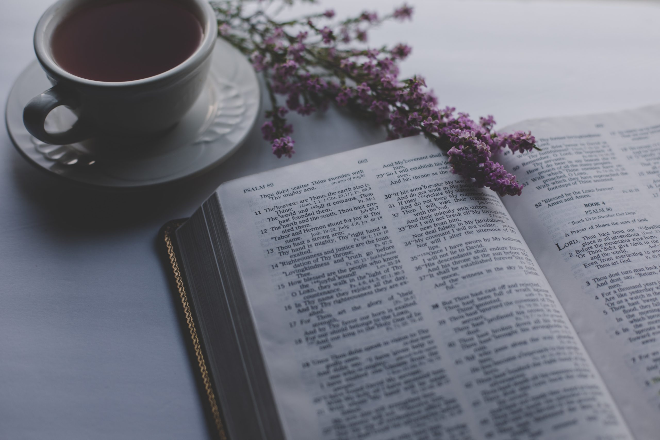 Il caso delle domeniche incentrate sulla predicazione